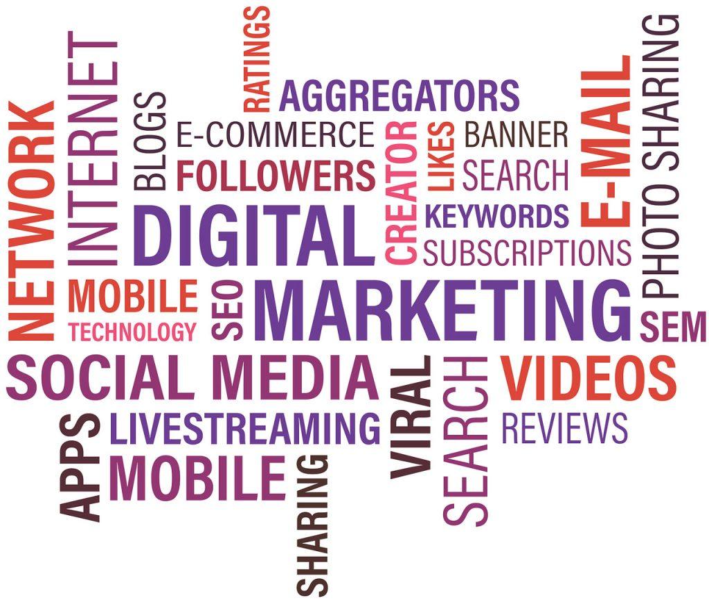 cruciverba di parole legate al significato di digital marketing come social media, network, internet, e-mail, videos, sem, seo, blogs